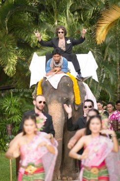 Elephant LR WM.